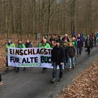 fridays for future würzburg